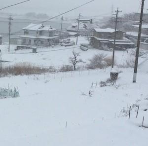 snowing_s